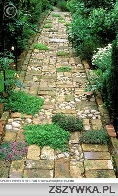 Mixed media path.  Ground cover, river rock, pavers