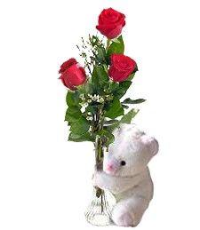 Rose rosse e peluche, il pensiero più tenero #sanvalentino2014