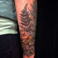 Ferns and mushrooms tattoo