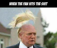 When the fan hits the shita! I just love this Trump humor 🤡🤛😠🖖😁 hehe :) Political Satire, Political Views, Political Cartoons, Trump Cartoons, Donald Trump, Motto, Presidents, Funny Pictures, Shit Happens