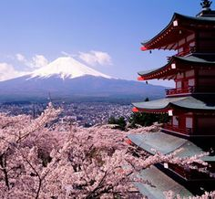 Japan...I have always wanted to visit the Japanese countryside and see the cherry blossoms in full bloom!!!!