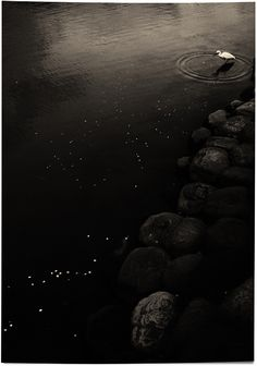 Albarran Cabrera  The Mouth of Krishna Japan, 2013. Toned Silver Gelatin Print.