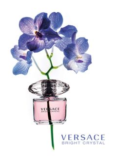Bright Crystal is a fragrance of timeless elegance, symbolizing the strong and confident #Versace woman.