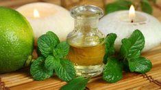A menta az egyik legrégebbről ismert gyógynövény. Többféle felhasználása ismert mind a háztartásban, mind az egészségügyben.