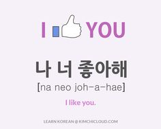 "To say ""I like you"" in Korean, you say ""na neo joahae"" (in Hangul: 나 너 좋아해), but to fully understand this word, you need to take a look at how it is used in context."