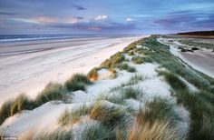 Not a soul can be seen for miles in Jon Gibbs' astonishing photograph from the sand dunes at Holkham Bay in Norfolk