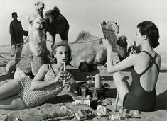 William Klein, Tatiana + Marie Rose + Camels, Picnic, 1958.