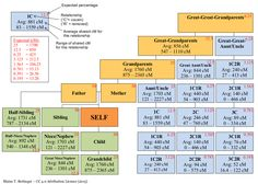 Genealogical Relatio