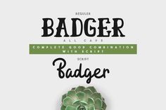 Badger Typeface - 50% OFF by giemons™ on @creativemarket #typeface