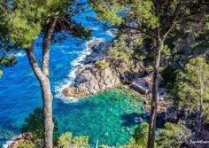 Jardín botánico de Cap Roig - Vista cala