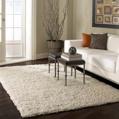 Living room with soft, neutral tones - love the rug.