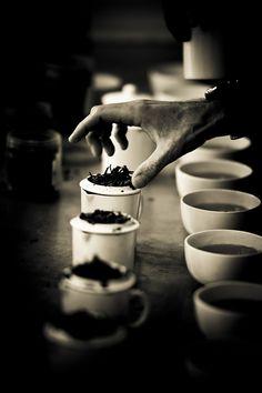 Tea Tasting in Darjeeling - 21 by Stéphane Barbery, via Flickr Asian Tea, Darjeeling Tea, Tea Benefits, Herbal Tea, Tea Packaging, Tea Time, Tea Recipes, Tea Pots, Drinking Tea