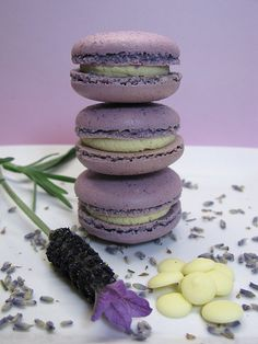 macaron  For you daughter...