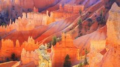 Bryce Canyon UT - The Hoodoos  #landscape #bryce #canyon #hoodoos #photography