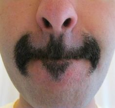 the moustache Gotham deserves