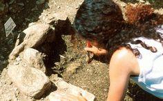 tombe-romane-in-un-terreno-agricolo a Piana