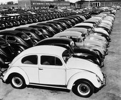Peter Keetman, OHNE TITEL (VW-KÄFER), 1953 Photographie, Lot 126
