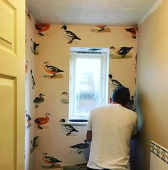 Mr Denton Drapes working on putting up some wallpaper for our down stairs bathroom. A Linwood Fabric duck print is what we have decided to go for. Oh how we love redecorating!