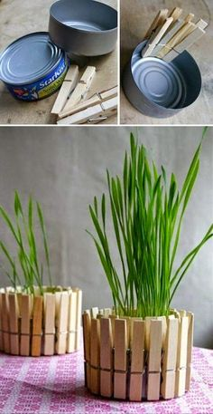 DIY Clothespin flower pot. #diy