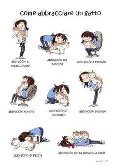 Come abbracciare un gatto. #abbracci #gatti