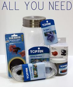 DIY Mason Jar Aquarium
