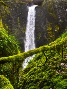 Beautiful waterfall with moss nearby.