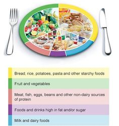 The Eatwell Plate - In brief, you should be eating:  - Plenty of fruit and vegetables - Plenty of bread, rice, potatoes, pasta and other starchy foods - choose wholegrain varieties when you can -   Some milk and dairy foods - Some meat, fish, eggs, beans and other non-dairy sources of protein -   Just a small amount of foods and drinks high in fat and/or sugar