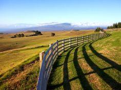 ranch equestrian estate in kamuela, hawaii