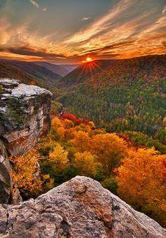 őszi természet