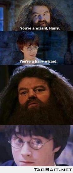 My all-time favorite Harry Potter Meme