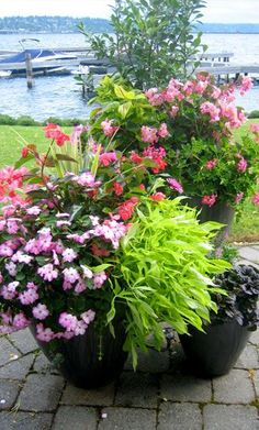 Container gardens are a vital part of modern landscape design. They are valuable additions to gardens, patios, decks, and entryways.