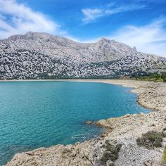 18km hike from Orient to Biniaraix with a lunch stop at the Cúber reservoir today. We saw sheep with lamb wild goats and vultures. Beautiful oaks pine trees and wild olives. Oh and loads of lemon trees full of lemons. This island has everything!  #cuber #embassamentdecuber #tramuntana #mallorca #mallorcagram #loves_mallorca #loves_baleares #igersmallorca #majorca #baleares #mallorcaisland #mallorcatestim #reservoir #hike #trekking #nature #outdoors #instagram #hiking #hikingadventures #trail…
