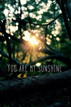 You are my sunshine..