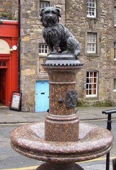 Greyfriars Bobby Monument, Edinburgh Scotland. (Go to the link to learn the amazing story of this amazing dog).