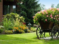 Plantar em terra adubada e escolher flores de características semelhantes são fundamentos básicos para compor a floreira.