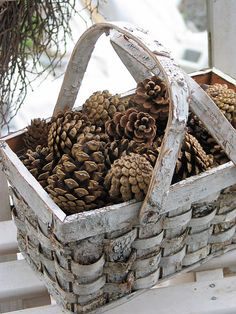 Vintage basket with pinecones