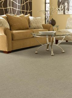 This carpet has built-in stain resistance and a special odor-reducing treatment. Serious Style is just one of the many carpet lines available from Home Decorators Collection.