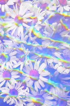 hologram. So cool. Flower wallpaper