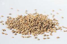Cum sa pastram nucile, semintele si cruditatile deshidratate