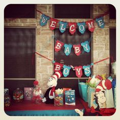 Dr. Seuss baby shower for twin boys
