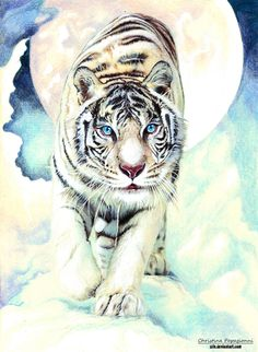 http://www.outshoot.ru/wp-content/uploads/2013/02/christina-papagianni-06.jpg, White Tiger with Moon