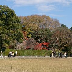 落柿舎 : 京都市, 京都府