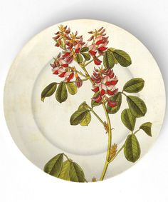 botanical plate: the mad platters