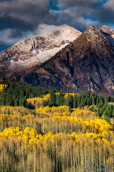 ~~An Autumn Dusting | West Elk Mountains, along Kebler Pass, near Crested Butte, Colorado | by kkart~~