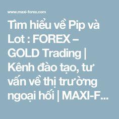 Tìm hiểu về Pip và Lot   : FOREX – GOLD Trading | Kênh đào tạo, tư vấn về thị trường ngoại hối | MAXI-FOREX.com