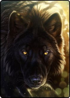 Out of the ETHER comes my SOUL WOLF... hackles up, golden eyes GLOWING... The sheer BEAUTY of her steals my BREATH. Her spirit is in ME and mine in HER...