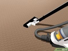 3 Ways to Get Rid of Carpet Beetles - wikiHow Oven Cleaning, Beetles, How To Get Rid, Shed, Carpet, Home Appliances, Easy, Fabric, House Appliances