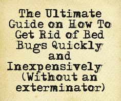 Learn how to get rid of bed bugs yourself! No one is immune to acquiring a bed bug infestation. Learn the best ways to protect yourself and get rid of those pesky critters once and for all. #bedbugs