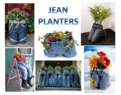 Hahah. Liter bottles , or, perhaps, milk gallons... Craft, Home and Garden Ideas - Jean Planters