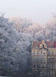 Poland. Dreamy.